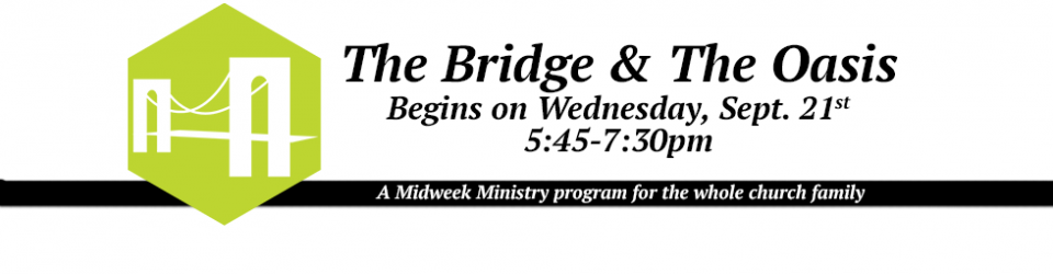 2016-17-bridge-intro-banner